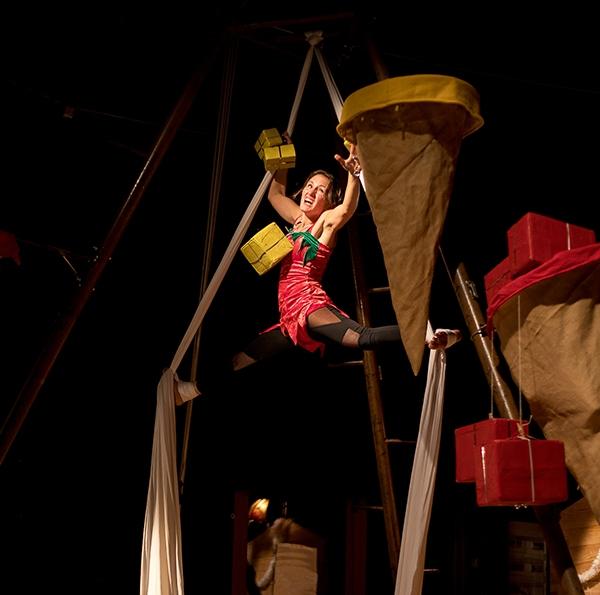spectacle cirque tissu